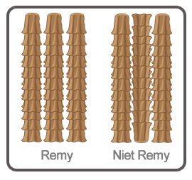 Extensions Remy of niet Remy uitleg.