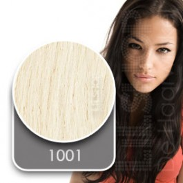 Euro SoCap Sticker extensions kleur: 1001 Platinablond