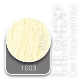 1003 Extra Zeer Licht Natuurlijkblond Euro SoCap Extensions steil 60cm/24inch