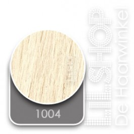 1004 Extra Zeer Licht Asblond Euro SoCap Extensions steil 50cm/20inch